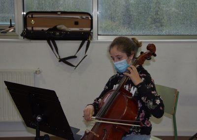 Curso de violonchelo, música de cámara